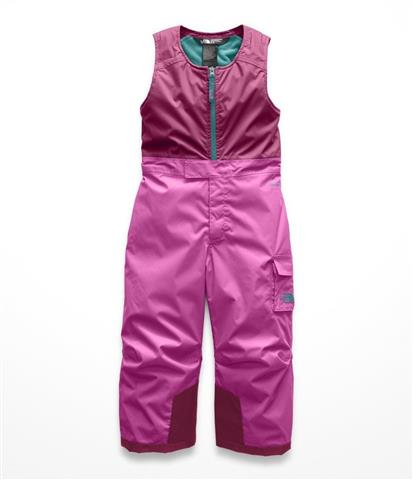 c2f7fe8dd The North Face Toddler Insulated Bib Pants - Youth