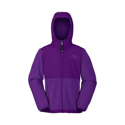 The North Face Denali Hoodie Girls