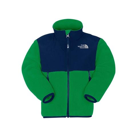 The North Face Denali Jacket Toddler Boys