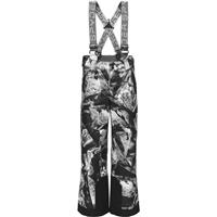 Spyder Propulsion Pant - Boy's - Frozen In Time Print