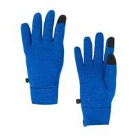 Spyder Centennial Liner Glove Mens