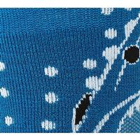 Smartwool Wintersport Shark Socks - Youth - Arctic Blue