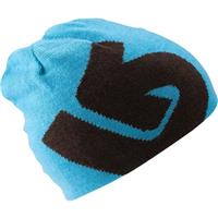 Grizzly Burton Billboard Beanie Boys