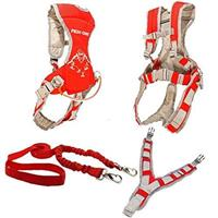MDXONE Mini-OX SKI Teaching Harness
