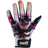 Puppy Neff Chameleon Gloves Mens