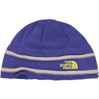 Starry Purple / Tokyo Green The North Face TNF Logo Beanie Youth