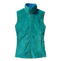 Turquoise Patagonia Plush Synchilla Vest Womens