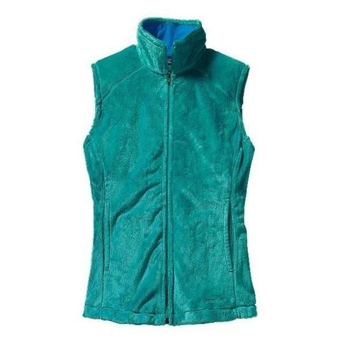Patagonia Plush Synchilla Vest - Women's